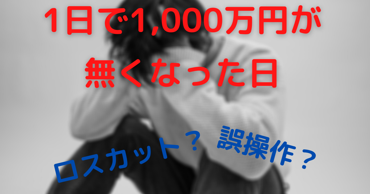【総額1,000万円】ロスカットへの道